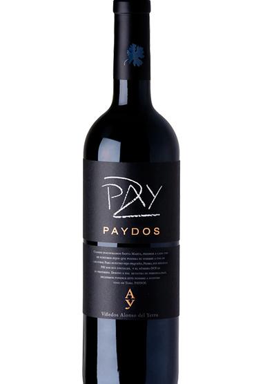 Paydos 2010