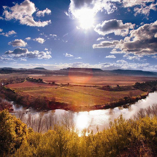 Vista de Viña Lanciano con el río en primer término
