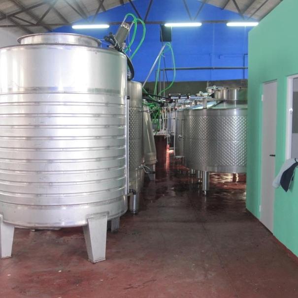 Depósitos utilizados en la fase de vinificación