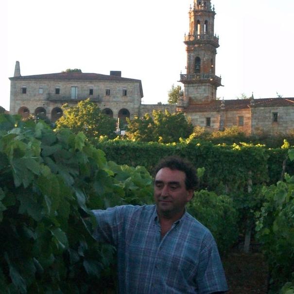 El colleiteiro en el viñedo