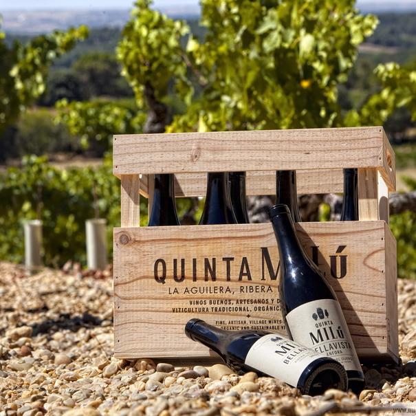 Los vinos de Quinta Milú