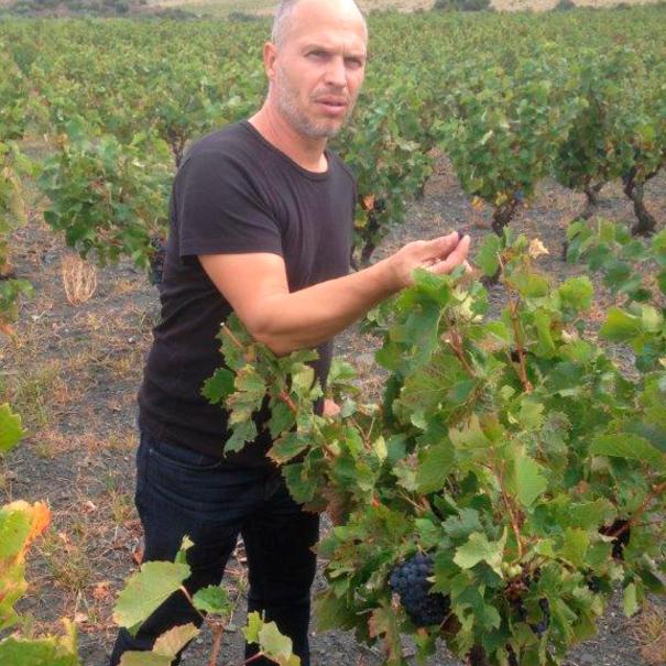 Jeff probando uvas